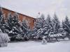 pict0040_2.jpg